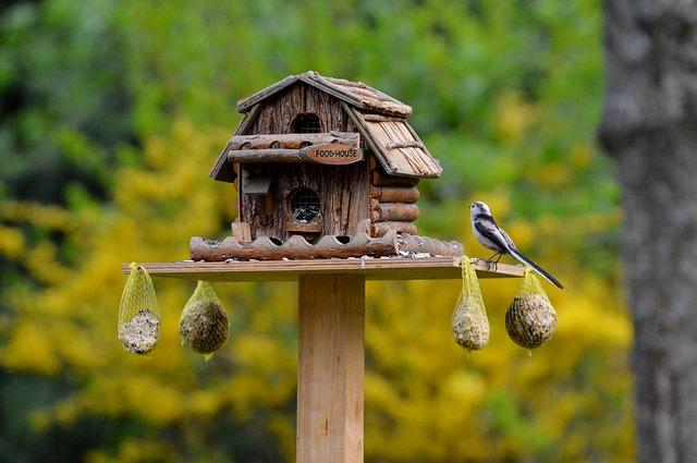 Vogelhaus im Garten